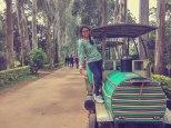 Toy train at Padmapuram Garden